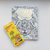 Закон притяжения Клевер Медиа Групп. ISBN