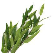 Ветки зелени для декора, 106см 2шт