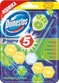 Блок для очищения унитаза Domestos Power